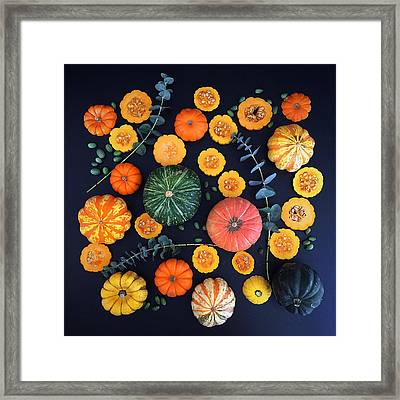 Multiple Squash Framed Print