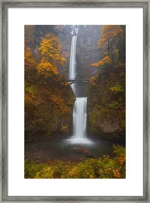Multnomah Mist Framed Print by Darren  White