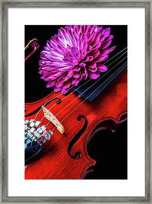 Mum And Violin Framed Print