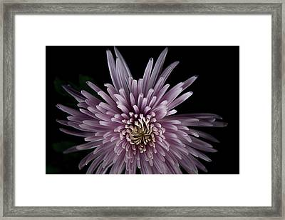 Framed Print featuring the photograph Mum by Eric Christopher Jackson