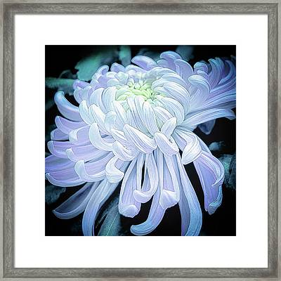 Mum In White Framed Print by Julie Palencia