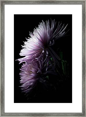 Framed Print featuring the photograph Mum, No.6 by Eric Christopher Jackson