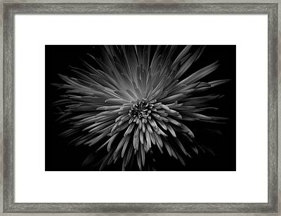 Framed Print featuring the photograph Mum. No.7 by Eric Christopher Jackson