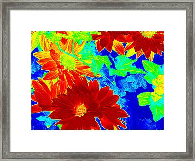 Mums In My Coloring Book Framed Print