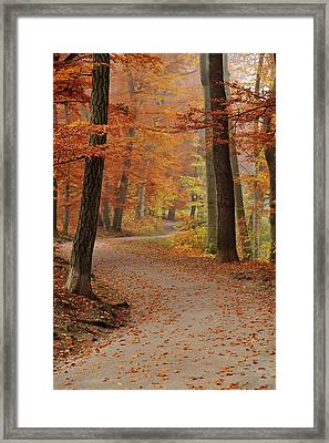 Munich Foliage Framed Print by Frenzypic By Chris Hoefer