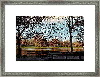 Munroe Falls Metropark Framed Print by Donna M Bungo