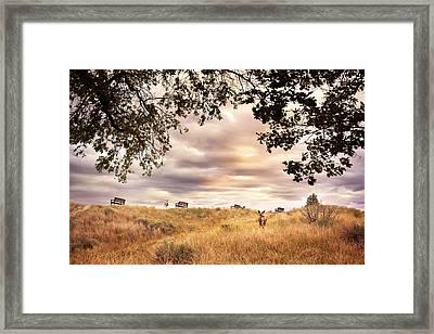 Munson Morning Framed Print