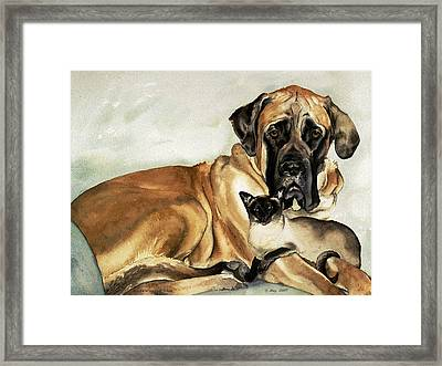 Murphy And Cody Framed Print by Eileen Hale