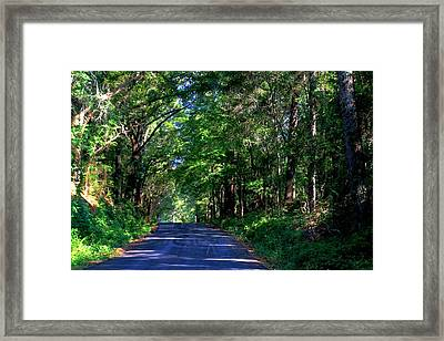 Murphy Mill Road - 2 Framed Print by Jerry Battle