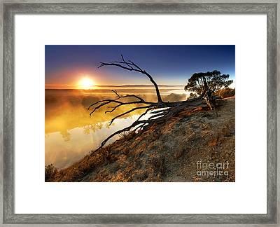 Murray River Sunrise Framed Print