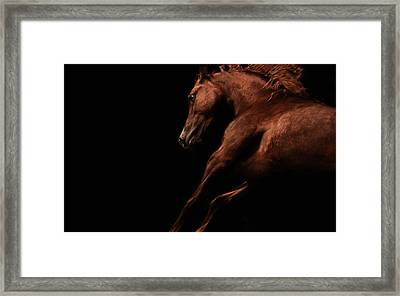 Muscle And Motion Framed Print