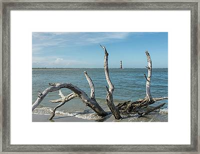 Muse Framed Print by Ed Waldrop