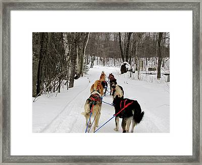 Mush Framed Print by Keith Stokes