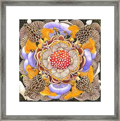 Mushroom Mandala Framed Print by Catherine G McElroy