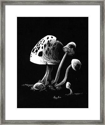 Mushroom Patch Framed Print by Morgan Banks