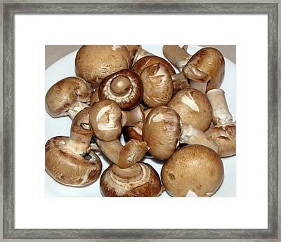 Mushroom Plate Framed Print by Lynda Lehmann