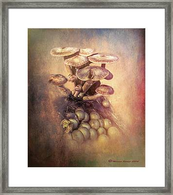 Mushrooms Gone Wild Framed Print