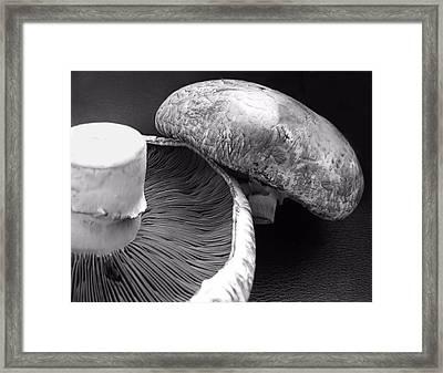 Mushrooms In Black And White Framed Print