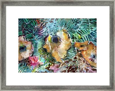 Mushrooms In The Forest Framed Print