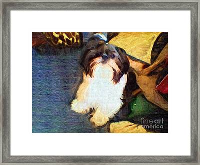 Mushu Framed Print by Deborah MacQuarrie-Selib
