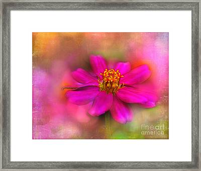 Music In The Garden Framed Print by Judi Bagwell