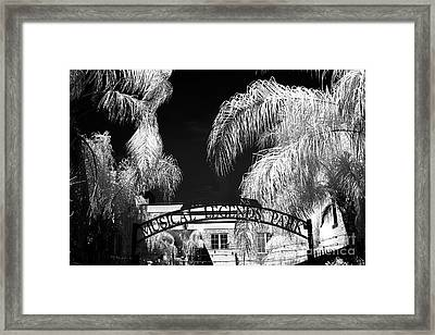 Musical Legends Park Infrared Framed Print by John Rizzuto