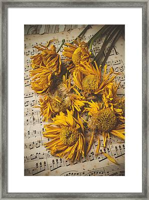 Musical Sunflowers Framed Print by Garry Gay