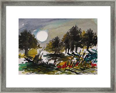 Musing-the Other Night Framed Print by John Williams