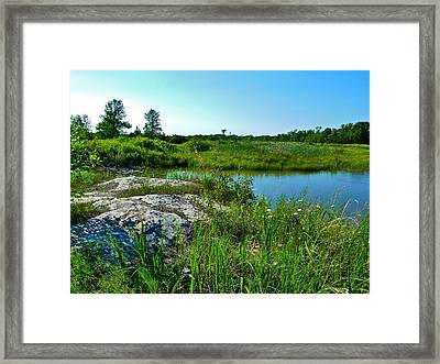 Framed Print featuring the photograph Muskoka Ontario 4 by Claire Bull