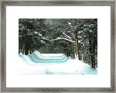 Framed Print featuring the photograph Muskoka Wonderland by Al Fritz