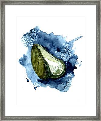 Mussel Shell Framed Print by Paul Gaj