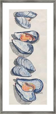 Mussels Framed Print by Jan Bennicoff