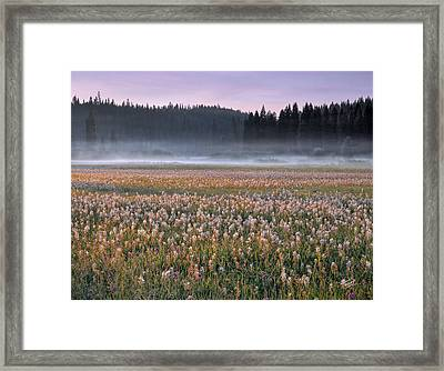 Musselshell Meadows Framed Print