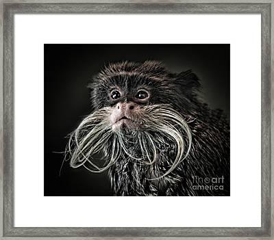 Mustache Monkey IIi Altered Framed Print