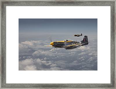 Mustang - 442 Sqdn  Rcaf Framed Print by Pat Speirs