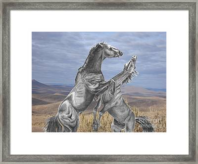 Mustang Battle Framed Print by Russ  Smith