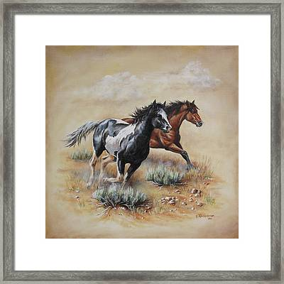 Mustang Glory Framed Print by Kim Lockman