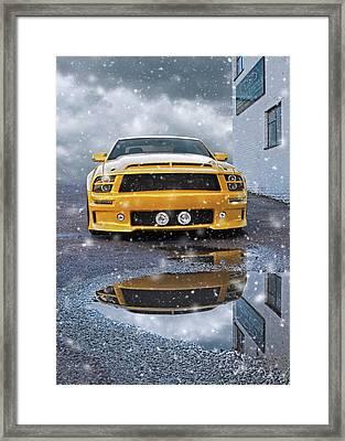Mustang Gtr In Snow Framed Print by Gill Billington