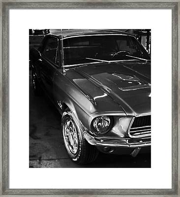 Mustang In Black And White Framed Print