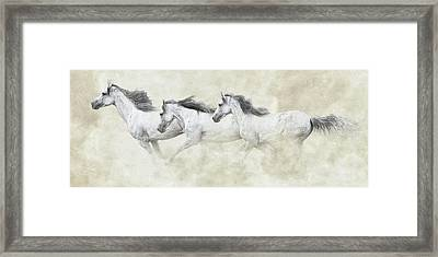 Mustang In Motion Framed Print by Ron  McGinnis