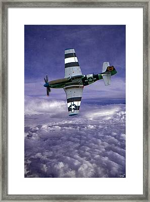 Mustang On Patrol Framed Print