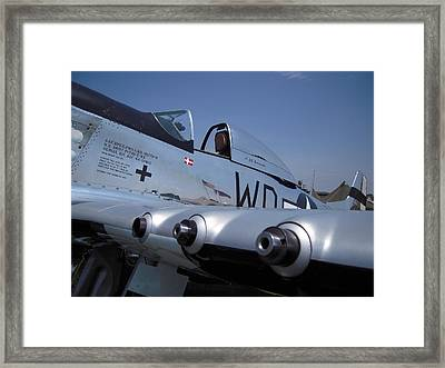 Framed Print featuring the photograph Mustang Persuasion by Don Struke