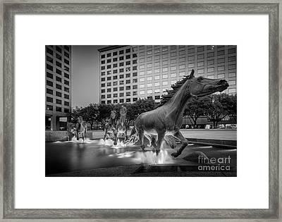 Mustangs At Las Colinas Framed Print