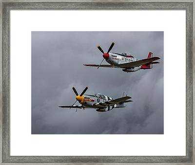 Mustangs Framed Print by Elvira Butler