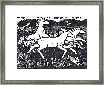 Mustangs Frisking On The High Plains Framed Print by Dawn Senior-Trask