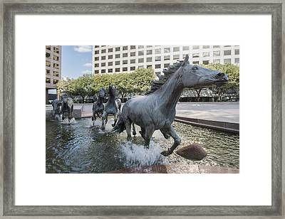 Mustangs Of Las Colinas Sculpture In Irving Texas Framed Print
