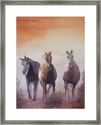 Mustangs Out Of The Fire Framed Print by Ally Benbrook