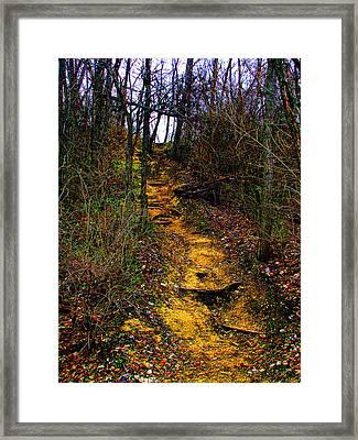 Mustard Hill Framed Print