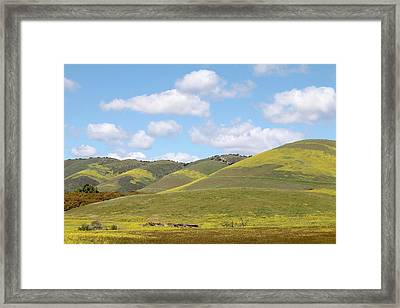 Mustard On Nipomo Hills Framed Print by Art Block Collections