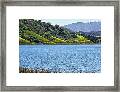 Mustard Patches Framed Print